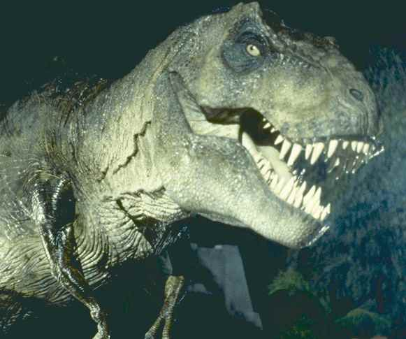 jurassic_park_movie_image_t_rex__1_1