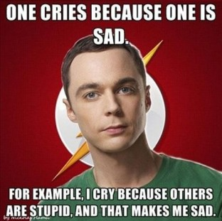 sheldon-stupid-people